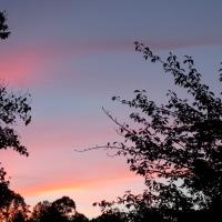 Autumn Pastel Sunsets