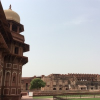 Taj Mahal and Red Fort {Agra}