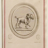 The Prints of Pompadour